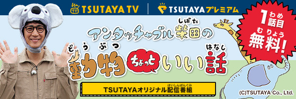 TTV_doubutu_001.jpg